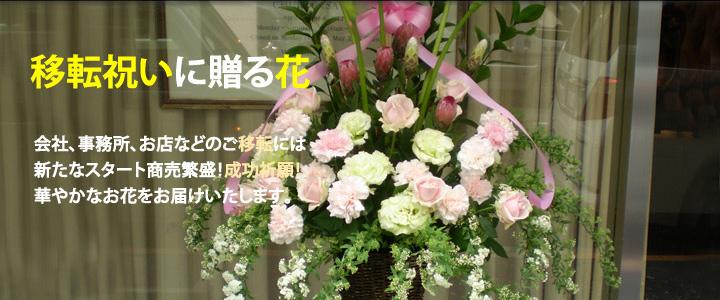 移転祝いに贈る花 新宿花屋
